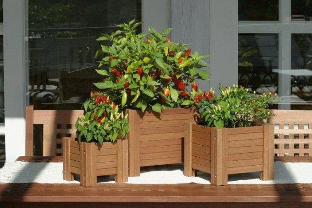 Vasos de Madeira para Flores