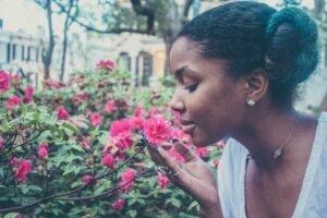 flores-perfumadas