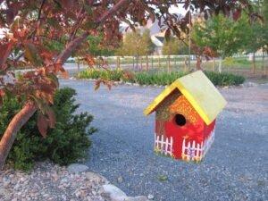 Casa-de-passarinhos