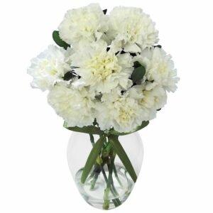 decorar-com-flores-cravos