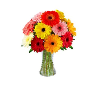 decorar-com-flores-gerberas