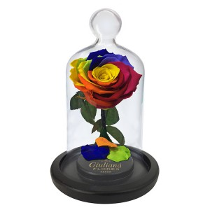 flores-e-chocolates-rosa-encantada-colorida