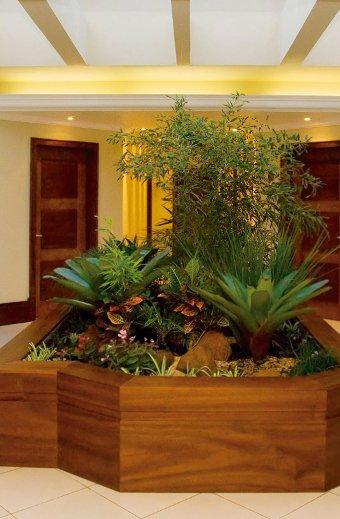 flores para jardim de inverno:72116 Plantas Para Jardim De Inverno 600×600 Plantas Para Jardim De