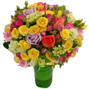 cultivo-mini-rosas