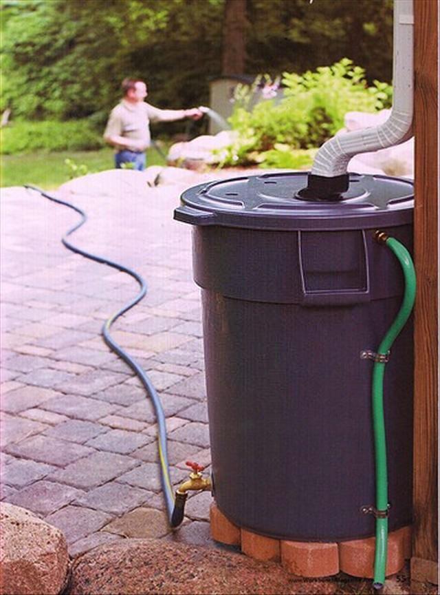Reutilizando água da chuva para regar as plantas