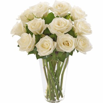 Brilhantes Rosas Brancas