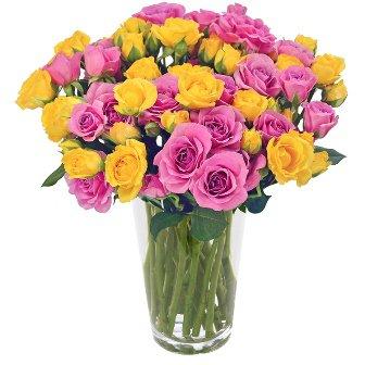 Primavera das Rosas