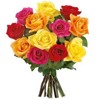 12 Rosas Importadas Coloridas