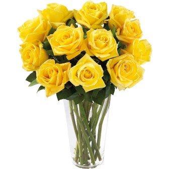 Brilhantes-Rosas-Amarelas
