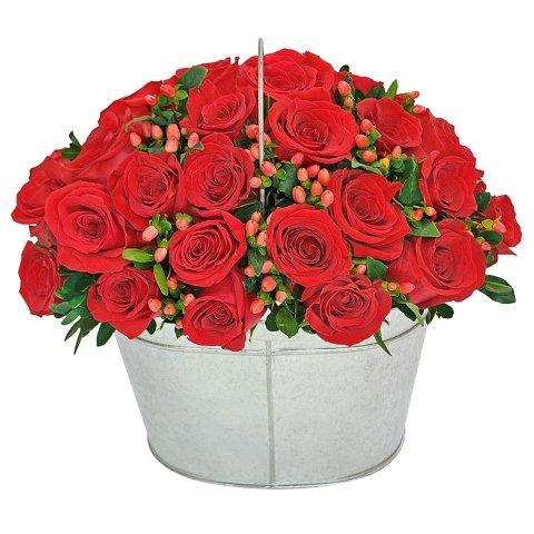 Noblesse de Rosas