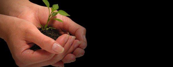 contribuir para a Sustentabilidade