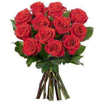 12 Rosas Importadas Vermelhas