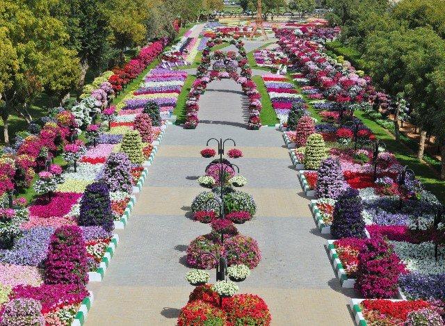 fotos de jardim florido : fotos de jardim florido:Conheça o Al Ain Paradise: O Parque Mais Florido do Mundo