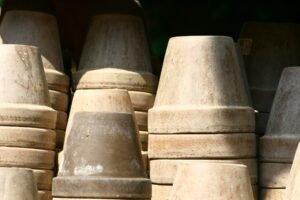 escolha-dos-vasos