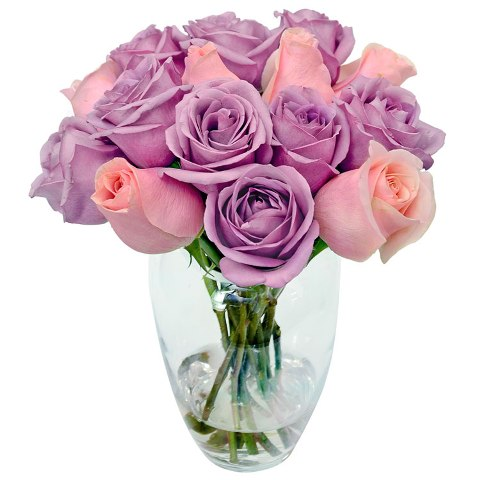 Luar das Rosas Delicadas