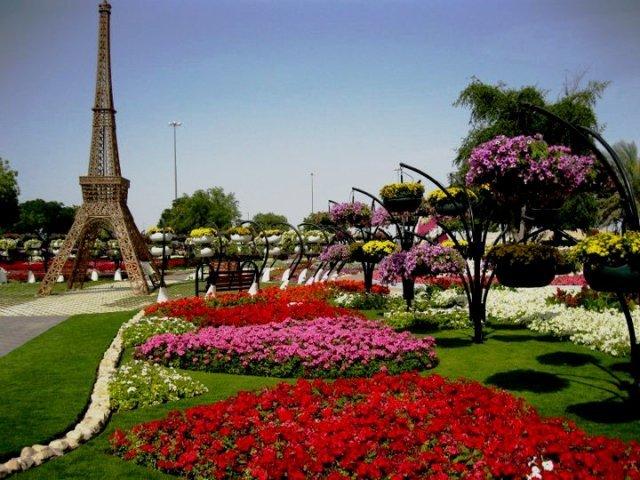 Parque Al In Paradise