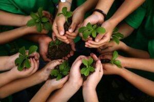 Decoração sustentável