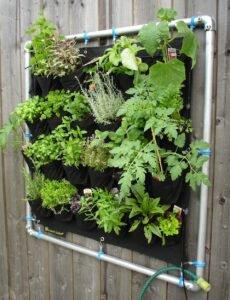vasos-de-flores-horta-vertical