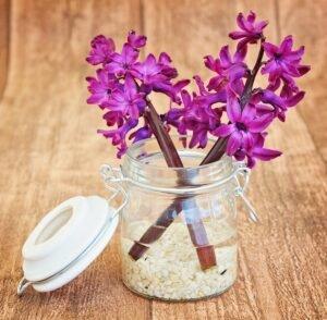 vasos-de-flores-pote