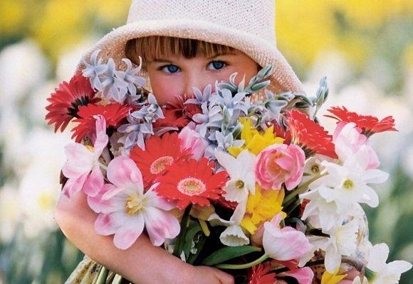 Contato flores