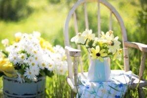 Dicas de como montar um jardim familiar bem romântico