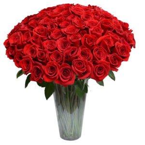 Jardim de Entrada - 100 Rosas Colombianas no Vaso