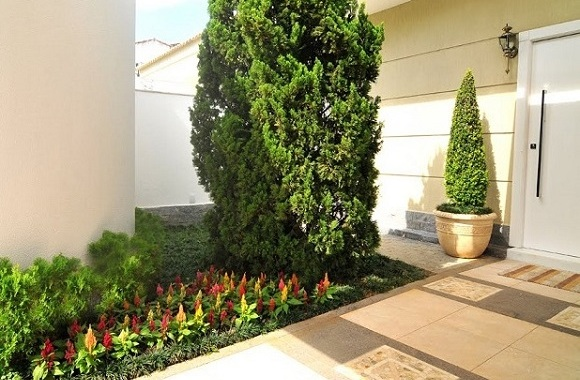 Jardim de Entrada com Lindas Flores e Plantas  Blog Giuliana Flores