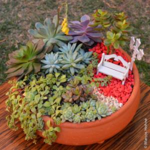 jardins-em-miniatura-fazer