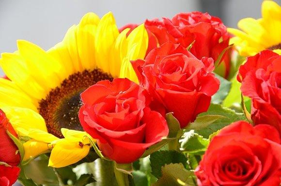 Arranjos e Flores - Vida - Giuliana Flores