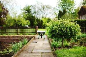 Dicas Eficientes para Eliminar Mato do Jardim