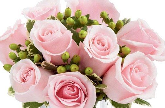 Peça Desculpas Enviando Flores, Presentes E Um Belo Cartão