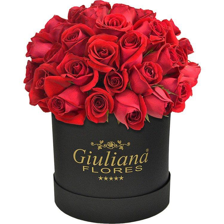 Majestosas Rosas Vermelhas Premium - significados das flores