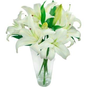 Flores brancas para o reveillon - Lindos lirios brancos