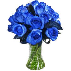 Curiosidades sobre as rosas - Luxuosas 24 Rosas Azuis
