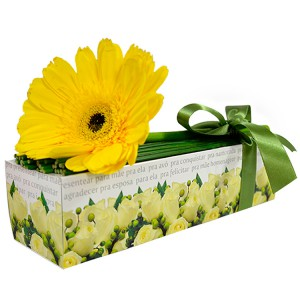 Flores amarelas - Sensacional de gerbera amarela