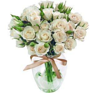 Significado da Rosa Branca - Contagiar de Rosas Brancas no Vaso