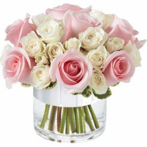 Significado da Rosa Branca - Elegante de Rosas