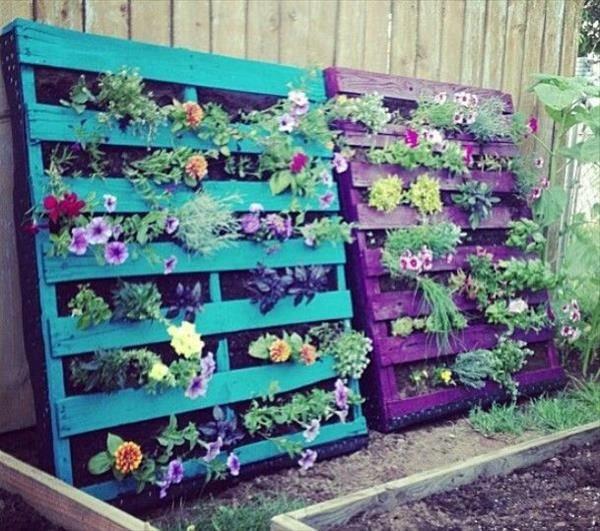 flores jardim vertical:Jardim Vertical de Paletes