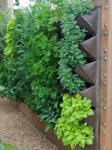 jardim-vertical-sapateira