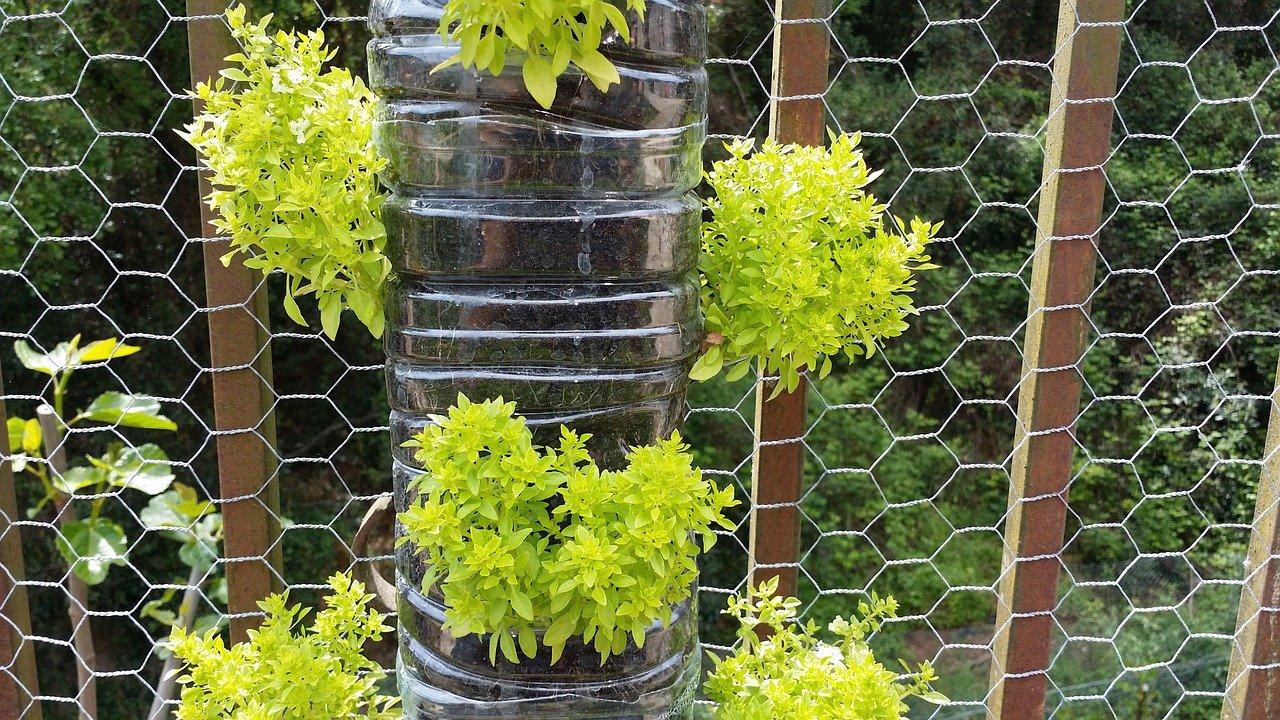 Fa a um jardim vertical com materiais recicl veis for Plantas recomendadas para jardin vertical