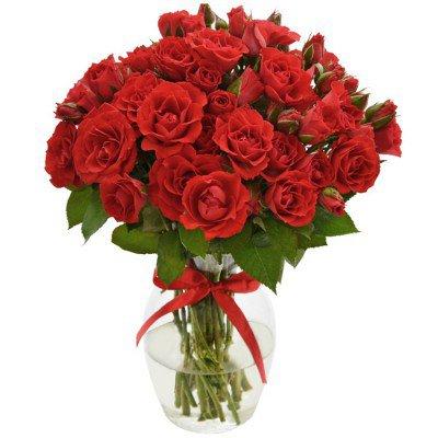 decore sua sala com flores lindas