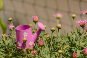 decore-seu-jardim