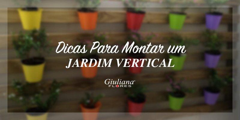 jardim vertical flores:Dicas Para Montar um Jardim Vertical