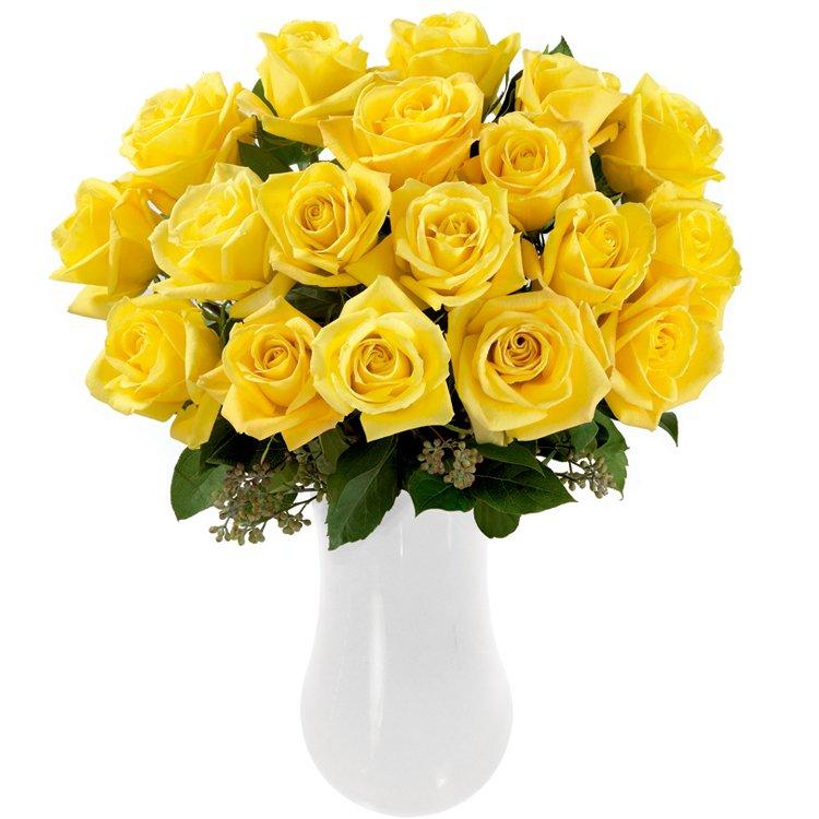 rosas-colombianas-amarelas
