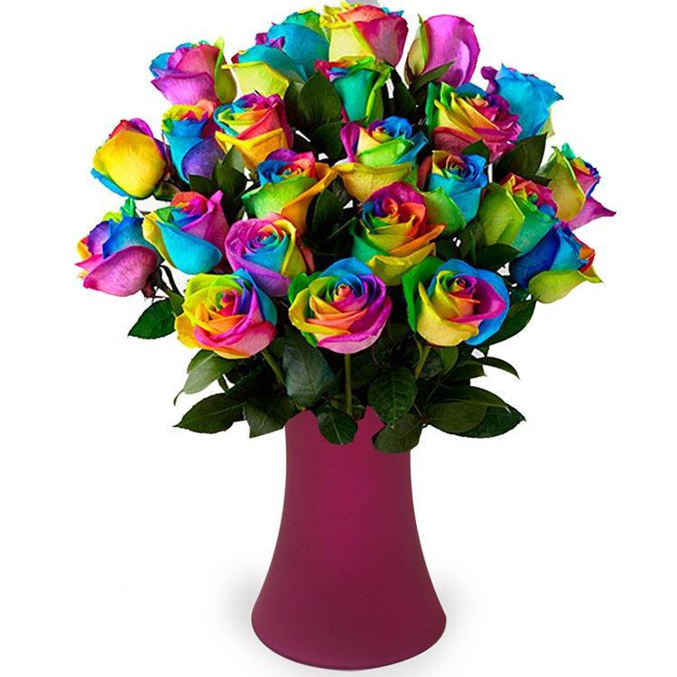 Luxuosas 24 Rosas Multicolor