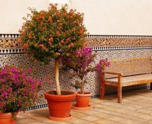 vasos-de-flores-terracota