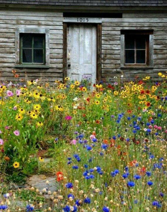 colher-flores-do-campo