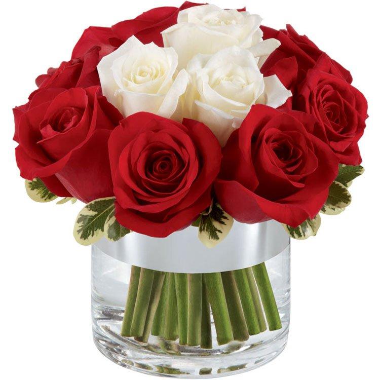 5 Motivos Para Você Enviar Flores para sua Namorada Hoje