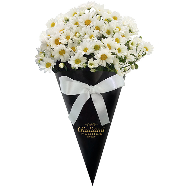 Magnificas Margaridas Brancas - flores de cada signo