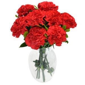 Flores para Homens: Poema de Cravos Vermelhos